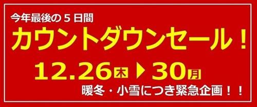 【2019】カウントダウンセール!_pages-to-jpg-0001.jpg